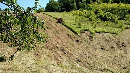 land clearance | Triplett Excavating